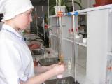 Определены лучшие сыроделы Беларуси