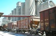 МАРТ ищет «ценовой сговор» на цементном рынке Беларуси