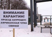 Азаров: У Украины есть обоснованные подозрения насчет белорусской продукции