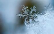 Из-за снегопадов в Германии отменено движение поездов и матчи Бундеслиги