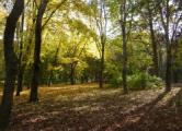 Минские парки откроют сезон уже в апреле