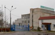 «Барановичидрев» стоит, инвестор из Швеции  с весны сидит в СИЗО КГБ