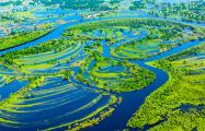 Экологи бьют тревогу из-за авантюры белорусских властей
