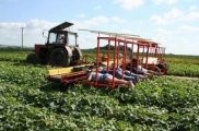 Белорусские аграрии провалили 2013 год