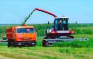 Куда уходят государственные деньги в сельском хозяйстве