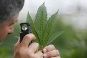 В Испании конфисковали новый мощный наркотик
