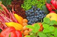 Литовская служба растениеводства: Беларусь усилила контроль за овощами и фруктами