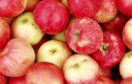 Из Беларуси в РФ под видом косметики везли контрабандные яблоки