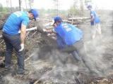 """Блогер нашел у """"Единой России"""" подложную фотографию с лесных пожаров"""