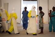 ВОЗ назвала сроки избавления Африки от вируса Эбола