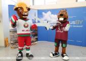 БФСС: Более 90 процентов белорусов высказались за перенос в другую страну ЧМ-2021 по хоккею
