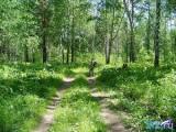 Каждый пятый сельхозобъект в водоохранных зонах в Витебской области признан экологами потенциально опасным