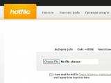 Корпорация Google вступилась за файлообменный сервис Hotfile