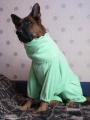 «Речицкий текстиль» шьет махровые халаты для Armani