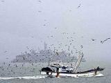 Пограничники КНДР задержали южнокорейское судно