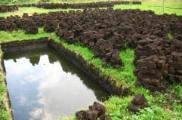 Беларусь сохранит объемы добычи торфа