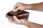 Просроченная задолженность по зарплате в Беларуси на 1 декабря составила Br750,1 млн.