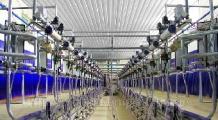Программы по модернизации молочно-товарных ферм в регионах должны быть реальными - Мясникович