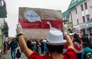 «Саня, ты запарил»: с какими плакатами вышли брестчане на Марш единства