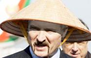 Китайские надежды Лукашенко вновь провалились