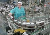 Малоритский консервно-овощесушильный комбинат в 2011 году увеличил объем инновационной продукции