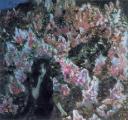 """Национальный конкурс """"Искусство книги-2012"""" пройдет в Беларуси 24-25 января"""