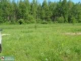 В Беларуси есть свободные земельные участки, которые граждане могут приобрести без аукционов