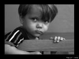 Стандарты ООН по альтернативной опеке детей-сирот полностью отражены в законодательстве Беларуси