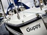 В Голландии пропала девочка-мореплаватель