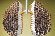 В Беларуси с 1 июля вырастут цены на многие виды сигарет