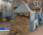 Беларусь и Омская область будут совместно перерабатывать лен