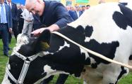 Лукашенко поручил выделить Венесуэле 500 тонн сухого молока