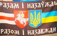 Фотофакт: Баннер «Жыве Беларусь» на секторе киевского «Динамо»