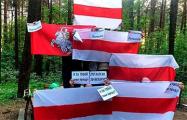 Белорусы провели ряд акций протеста