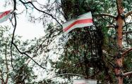Лесные партизаны дают жару