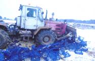 Под Брянском раздавили трактором 16 тонн грибов из Беларуси