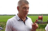 Фермер: Белорусские трактора заходят в поле, а потом думай, чем их притащить