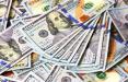 Фотофакт: В белорусских обменниках заканчивается валюта