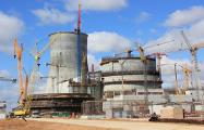 Министр энергетики Литвы: БелАЭС может нанести удар по репутации атомной энергетики во всем мире