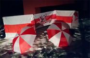В Орше, Борисове и Новополоцке поддержали белорусов Санкт-Петербурга