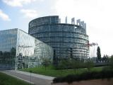 Европарламент грубо вмешивается в дела Беларуси
