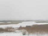 Беларусь и Россия готовят новую союзную программу по сохранению приграничных водно-болотных угодий