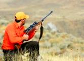 Россияне массово скупают охотничьи туры в Беларусь