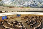 Корейцы устроили драку на заседании Совета ООН по правам человека
