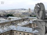 День Воли в Париже (Фото)