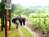 Национальная академия наук Беларуси может быть реформирована