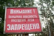 В Беларуси запрещено посещение лесов в более чем в 50 районах