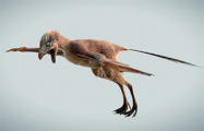 Рукастый ящер: ученые открыли динозавра с самым коротким именем