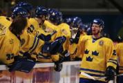 Парламент Швеции обсудил перенос ЧМ по хоккею из Минска