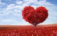 Куда отправиться в День святого Валентина?
